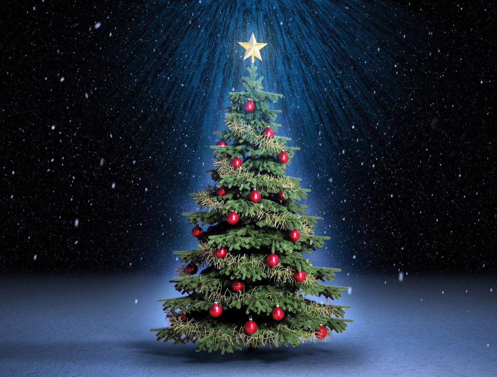 La historia del rbol de Navidad CRN Noticias