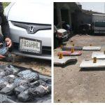 Las autoridades localizaron marihuana y partes de carros robados en operativos en Petén y Quetzaltenango. (Foto: PNC)