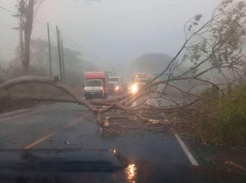 Las primeras lluvias de la temporada han causado derrumbres, inundaciones y deslaves en varios departamentos, según informó CONRED. (Foto: DCA)