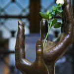 Firma de la paz