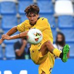 El futbolista juvenil del Verona de Italia, Andrea Gresele, está en cuidados intensivos tras quedar electrocutado en una estación de tren; el jugador tocó por accidente cables de alta tensión de un tren en una estación de Verona.