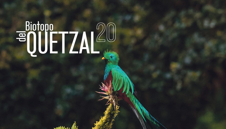 EntreCultura 156: Biotopo del Quetzal