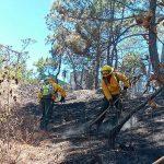 El fuego ha consumido un total de 1 mil 530,75 hectáreas de bosque durante la temporada de incendios 2020-2021 en el país; esto según publicó la Coordinadora Nacional para la Reducción de Desastres -CONRED-.