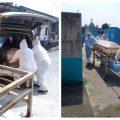 Del 2 de marzo del 2020 al 16 de abril del 2021 la estadística de muertes por COVID-19 va en aumento en el departamento de Suchitepéquez. Actualmente son 118 personas que han perdido la batalla contra el virus.