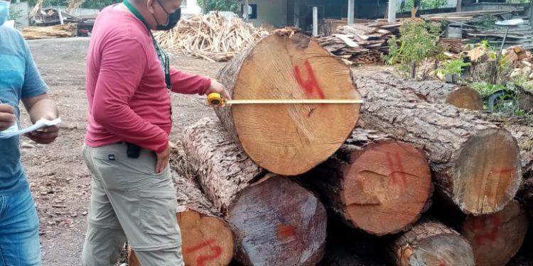 Personal del Instituto Nacional de Bosques -INAB- verificó la procedencia de madera ubicada en la aldea Valparaíso, en La Democracia, Huehuetenango. Esto en cumplimiento de las acciones de la campaña Fomento a la Legalidad en el Sector Forestal de Guatemala.