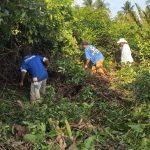 Varios habitantes de comunidades del Semillero en el municipio de Tiquisate, Escuintla, trabajan en un plan de siembra y protección del mangle. Según los participantes es de suma importancia el proyecto que se está implementando.