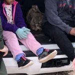 Una patrulla fronteriza estadounidense localizó en las últimas horas a cinco menores indocumentadas en el sur de Texas, en la frontera con México, entre las que se encontraban una bebé y una niña de dos años.