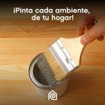 Tips para pintar los ambientes de tu hogar, con la pintura correcta