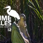 EntreCultura 164: Los humedales y el cambio climático